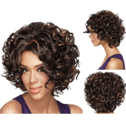 Hrph Fashion Sexy Front Wigs Human Hair Glueless Short Curly Lace Front Wigs Vrgin Human Hair Curly Wigs For Women