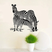 Aiwall 9503 Animal Three Zebras Drink Plenty of Water Wall Decal Sticker Living Room Baby Decor Black Colour Vinlyl Removable