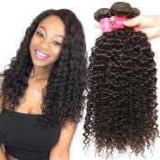 Malaysian Hair 3 Bundles, Longqi Beauty hair Malaysian Curly Remy Hair 3pcs Set 100%Unprocessed Human Bundles