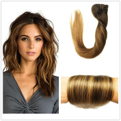 Stella Reina 120g 7pcs Full Set Clip In Hair Extensions Subtle Caramel Ombre Balayage Blonde Highlights Colour #2 To P2/6 And #6 Blended Clips Sombre Remy Human Hair Extension