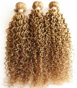Yami 7A Grade Brazilian Curly Hair 3PCS Lot Brazilian Curly Virgin Hair Weaves, Brazilian Jerry Curl Virgin Hair Blonde 27#