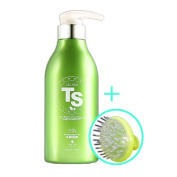 All New TS Hair Loss Prevention Shampoo 16.9 Ounce(500ml), Made in Korea / the Latest Version/ Massage brush gift
