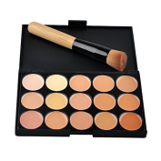 Professional 15 Colours Facial Concealer Cream Foundation Makeup Palette with Brush