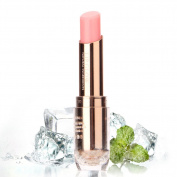 HSL Moisturising Lipstick Colour Changing Long Lasting Lip Gloss