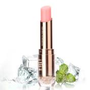HSL Moisturising Lipstick Colour Changing Long Lasting Lip Gloss