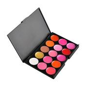 Professional 15 Colours Lip Gloss Lipstick Makeup Palette