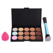 Elevin(TM) Women High Quality 15 Concealer + Angled Brush + Sponge Puff Makeup Contour