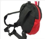 Rosbane(TM) Baby Kid Safety Harness Strap Bat Bag Anti-lost Walking Wings