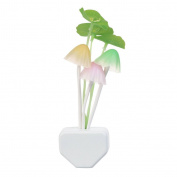 Kids Night light Led Plug In Nightlight for Kids Children Colour Changing LED Sensor Mushroom Kitchen Bedside Wall Lights