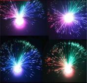 Multicolor Fibre Optic Lamp Light Holiday Wedding Centrepiece Fiberoptic LED