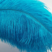 KOLIGHT®20pcs DIY Ostrich Feather Sky-blue 30cm - 36cm Natural Feathers Wedding, Party ,Home ,Hairs Decoration