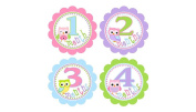 Baby Monthly Stickers. First Year Stickers. Onesie Baby Belly Stickers. Owls, pink, purple, blue and green. 12 Months Milestone stickers for adorable baby pictures. First year growth stickers