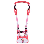 Zicac 4-in-1 Super Breathable Toddler Walking Safety Harness Walking Assistant Walkers