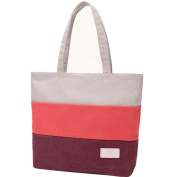 BG® Women Canvas Red Plum Multi Coloured Tote Shoulder Handbag