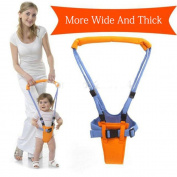 Adjustable Baby Walking Assistant Baby Walker Carrier Learning Walking Tools