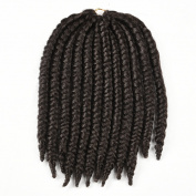 Originea TM 2X - Crochet Havana Mambo Twist Braid Locs Hair Hight Temperature Quality 5 Bundles