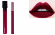 2pc Dark Burgundy Plum Matt Kiss-Proof Lipstick Lip Colour Wand Set with Lip Liner
