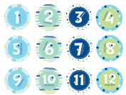 Pearhead Baby Milestone Belly Stickers