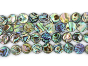 "12mm Natural Abalone Shell Flat Coin Beads Strand 16"" Jewellery Making Beads"