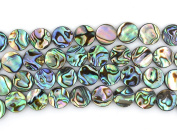 """10mm Natural Abalone Shell Flat Coin Beads Strand 16"""" Jewellery Making Beads"""