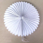 """Zorpia® 16""""(40cm) Tissue Paper Fan Tissue Paper Fan Hanging Fan Tissue Paper Decorative Fan, Party Decorations for Weddings, Birthday Parties, Baby Showers and Nursery Decor Set of 6"""