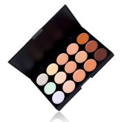 Professional 15 Colours Contour Face Cream Concealer Camouflage Makeup Palette