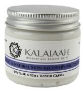 Hyaluronic Acid Night Repair Crème - Vitamin C, CoQ10, Advanced Peptides, Vitamin B5. Age Defying