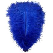 Ewandastore 20pcs Ostrich Feathers,10-12inch 25-30cm Real Natural Ostrich Feathers DIY Craft Feather for Home Party Wedding Decoration