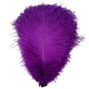Ewandastore 20pcs Ostrich Feathers 7-10inch(20-25cm) Real Natural Ostrich Feathers for Home Party Wedding Decoration