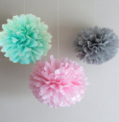 Somnr®12pcs Mixed Mint Grey Pink Tissue Paper Pom Poms Flower Wedding Centrepieces Birthday Party Baby Room Nursery Decoration by Somnr