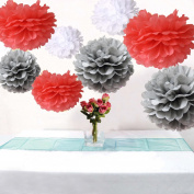 Somnr® Set of 9 White Grey Coral Tissue Paper Pompoms Wedding Flower Birthday Bridal Shower Party Hanging Decoration by Somnr