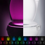 Familite Motion Activated Multi-Colour Battery Powered Toilet Nightlight