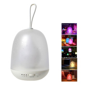 Anpress Portable Multicolor LED Night Lamp Colourful Baby Night light, Stepless Changing Colour , Auto-off Timer, Hanging Rope, USB Rechargeable for Bedroom, Baby Room, Camping