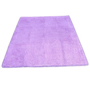 Eshion Modern Plush Carpet Thick Rugs for Home, Living Rooms, Bedroom