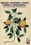 Oranges, Mandarins, Cedars, Lemons & Bergamots..  : Artistic Engravings of Ferrari, Aldrovrandi, Volckhamer...