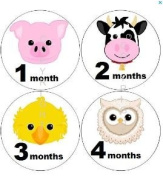 Baby Monthly Stickers Baby Monthly Stickers Neutral Monthly Stickers Farm Barn Animals Faces Pig Owl Stickers Chicken Horse Sheep