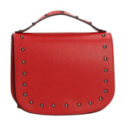Chicca Borse Woman Clutch, Small Elegant Bag in Genuine Leather Made in Italy 20x16x8 Cm