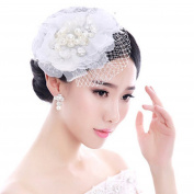 Drasawee Women's Pearl Wedding Bridal Birdcage Face Veil Headpiece Evening Hair Clip