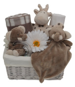 Gorgeous Silver Themed Elli & Raff New Baby Gift Hamper/Basket Baby Shower Gift - with FAST & FREE UK Delivery!