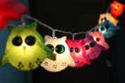 Owl Bird Fancy Lantern String Party,Patio,Fairy,Decor,Living Room,Kid Child Bedroom,Boy,Girl,Christmas,Wedding Lights by CHAINUPON