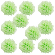WYZworks Set of 10 - LIGHT APPLE GREEN 25cm - (10 Pack) Tissue Pom Poms Flower Party Decorations for Weddings, Birthday, Bridal, Baby Showers, Nursery, Décor