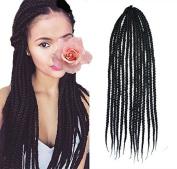 Stepupgirl 50cm Pure Black 1B# Colour Soft Dread Lock Crochet Synthetic Braiding Hair