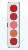 Kryolan 5196 Blusher Makeup Palette 5 Colours (Colour