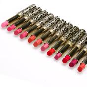 Eshion High Quality Fashion Women Sexy 12 Colours Moisture Charming Shimmer Matte Lipstick Set
