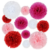 kilofly 24pc Wedding Crafts Tissue Paper Pom Pom Flower Colour Party Decoration