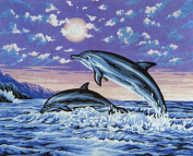 DOLPHIN JUMPING FROM THE SEA #4 NEEDLEPOINT CANVASFROM COLLECTION D'ART CANVAS ONLY