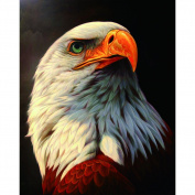 Whitelotous DIY 5D White Eagle Diamond Painting Cross Stitch Home Decor 25*30cm