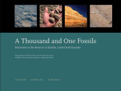 One Thousand and One Fossils