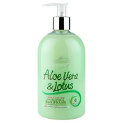 Astonish Aloe Vera & Lotus Anti Bacterial Hand Wash 500ml
