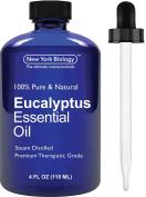 Eucalyptus Essential Oil - 100% Premium Quality - Premium Therapeutic Grade Eucalyptus Oil - Huge 120ml